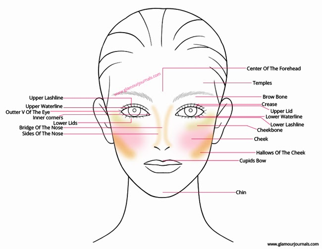 Face-anatomy-for-makeup-beginners-glamourjournals