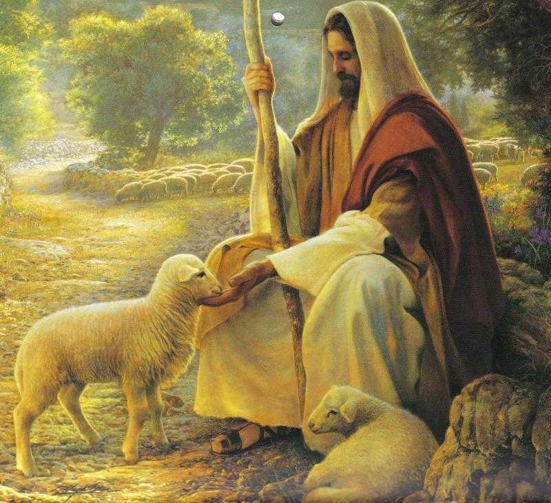jesus pictures : my good shepherd on Images Of The Good Shepherd Jesus