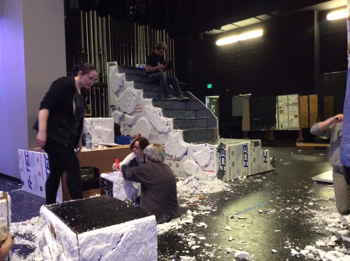 set build for Lion King 13