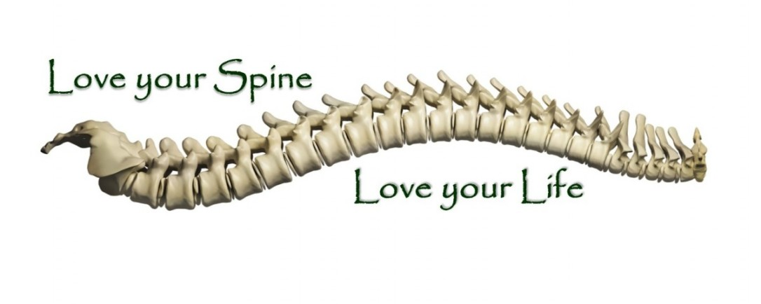 Love-yor-Spine-Love-your-Life-Cover-1-1200x480